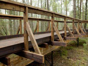 Bois de structure raboté en pin classe 4 vert